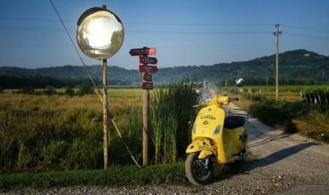 Collio - Grenzenloses Hügelland